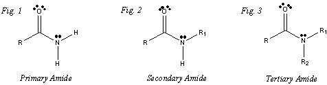 Ketones, Amines and Amides - Organic Chemistry