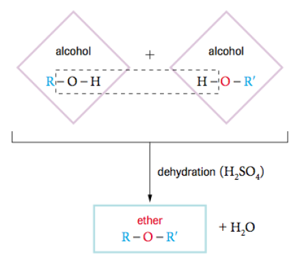 types of organic reactions pdf